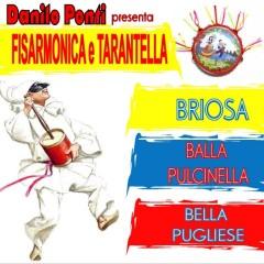 Scarica gratis i brani dell'album Fisarmonica e tarantella di Danilo Ponti