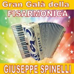 Gran Galà Della Fisarmonica-Artisti Vari